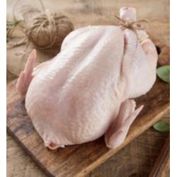 Petit poulet Ferme du Puiseau