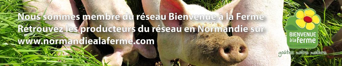 Accédez au site du réseau Bienvenue à la Ferme en Normandie